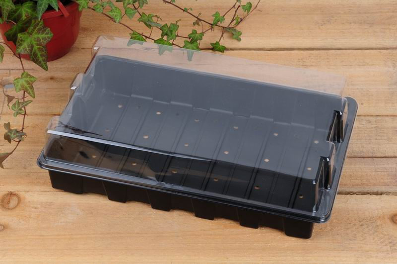 Lid for 24 Cell Seed Tray